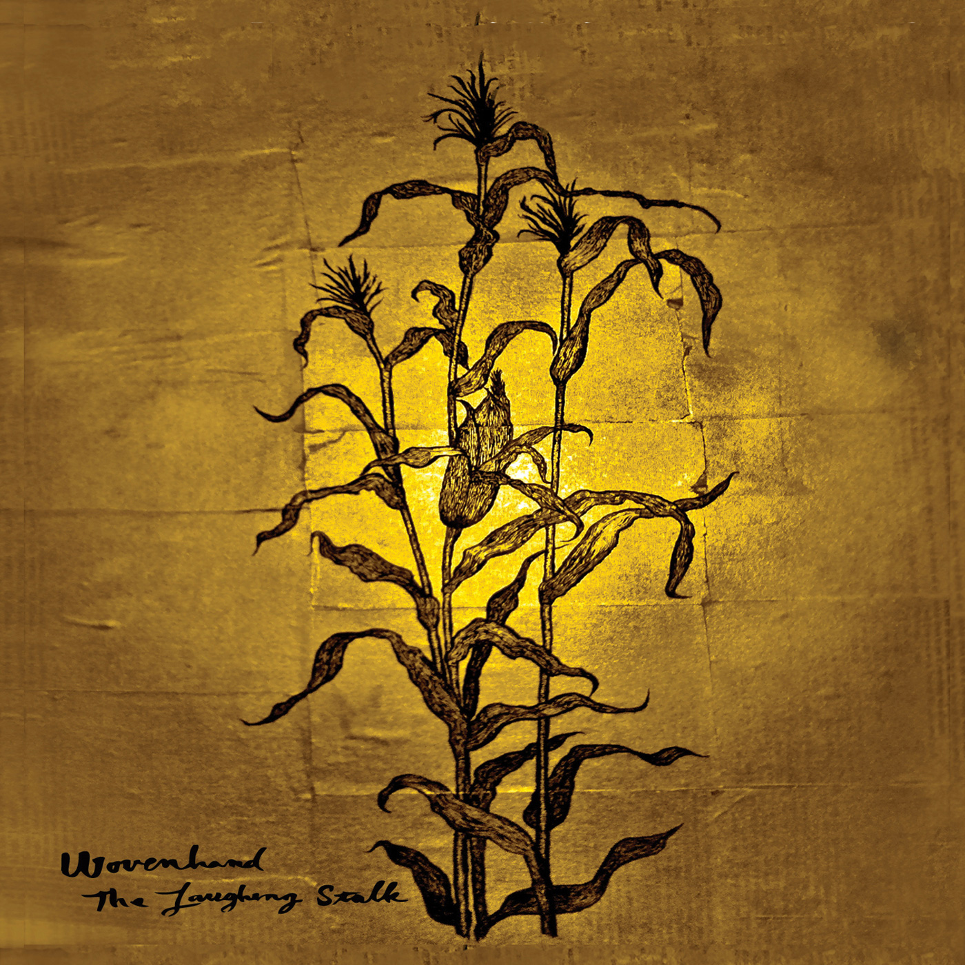 The Obelisk: AT A GLANCE: Wovenhand, The Laughing Stalk