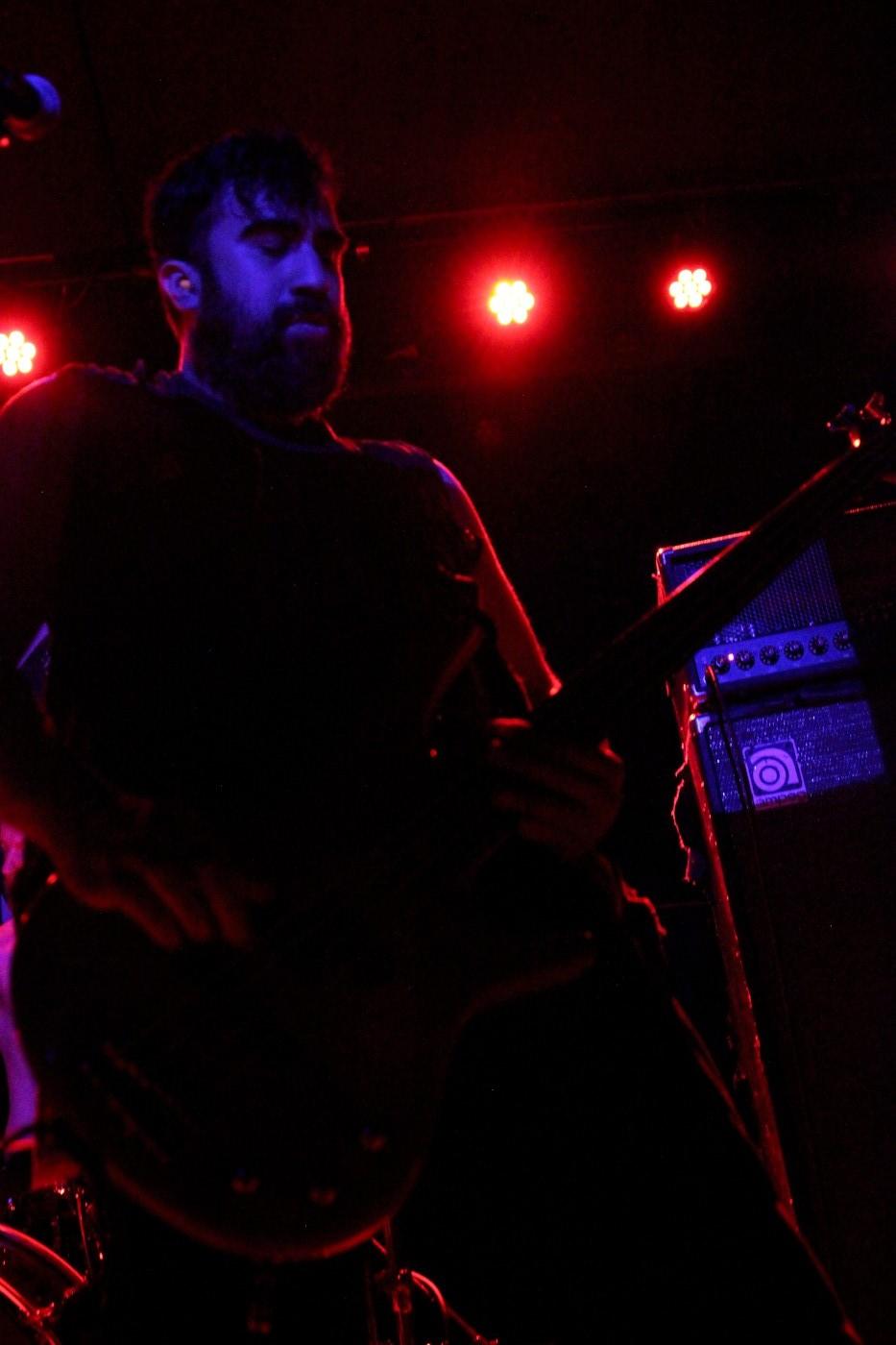 Usnea (Photo by JJ Koczan)