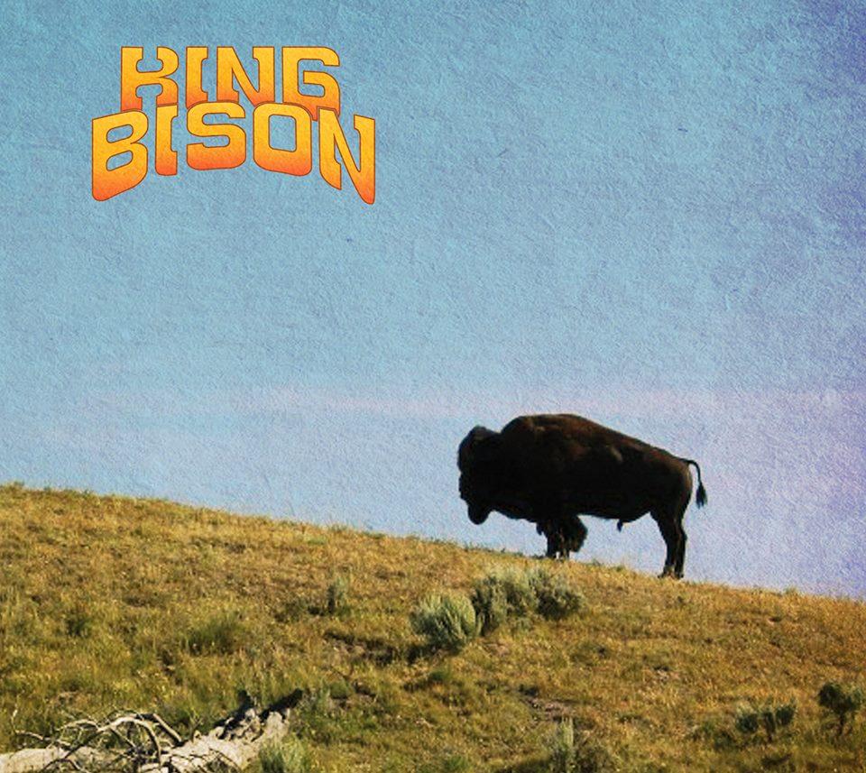 king bison king bison
