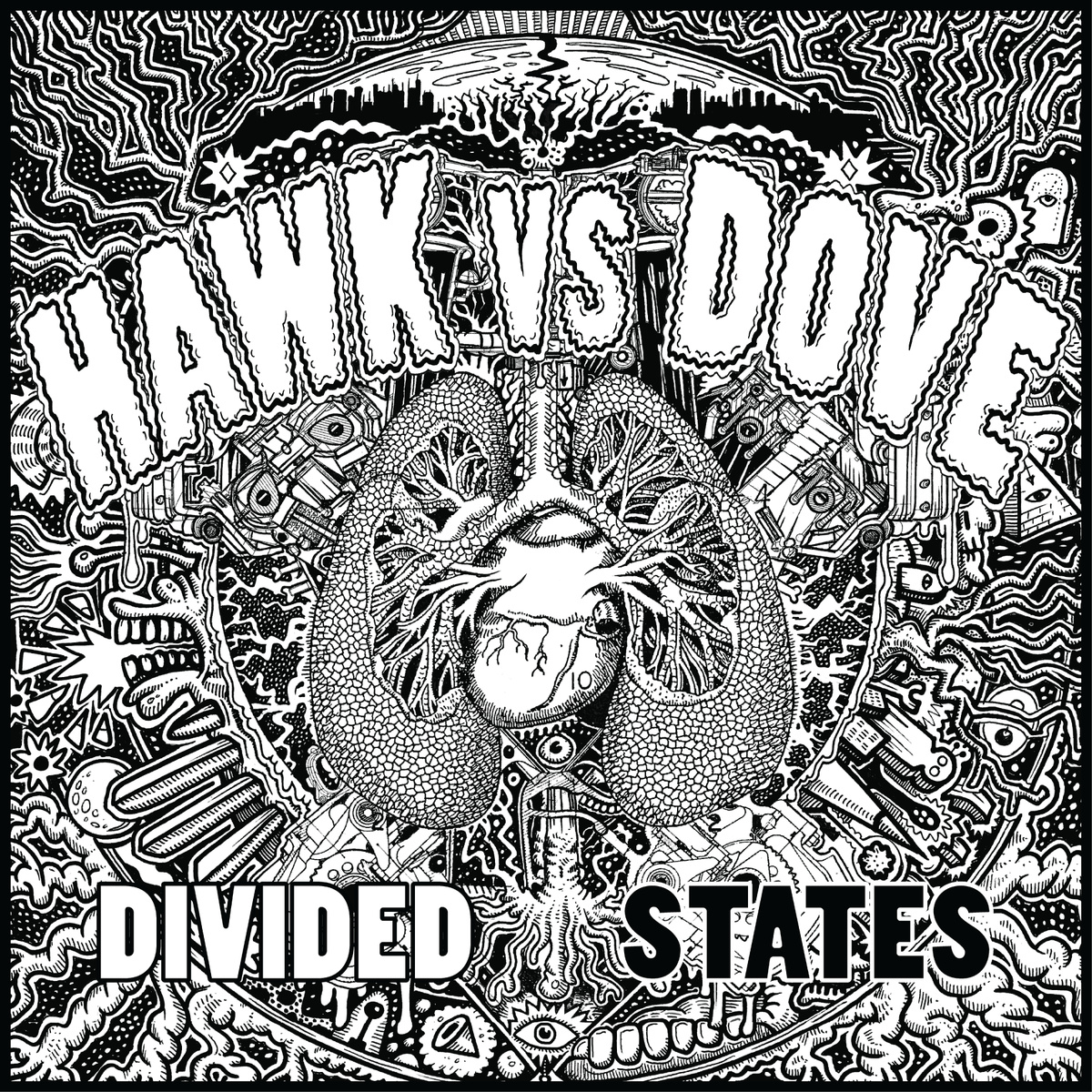 hawk vs dove divided states