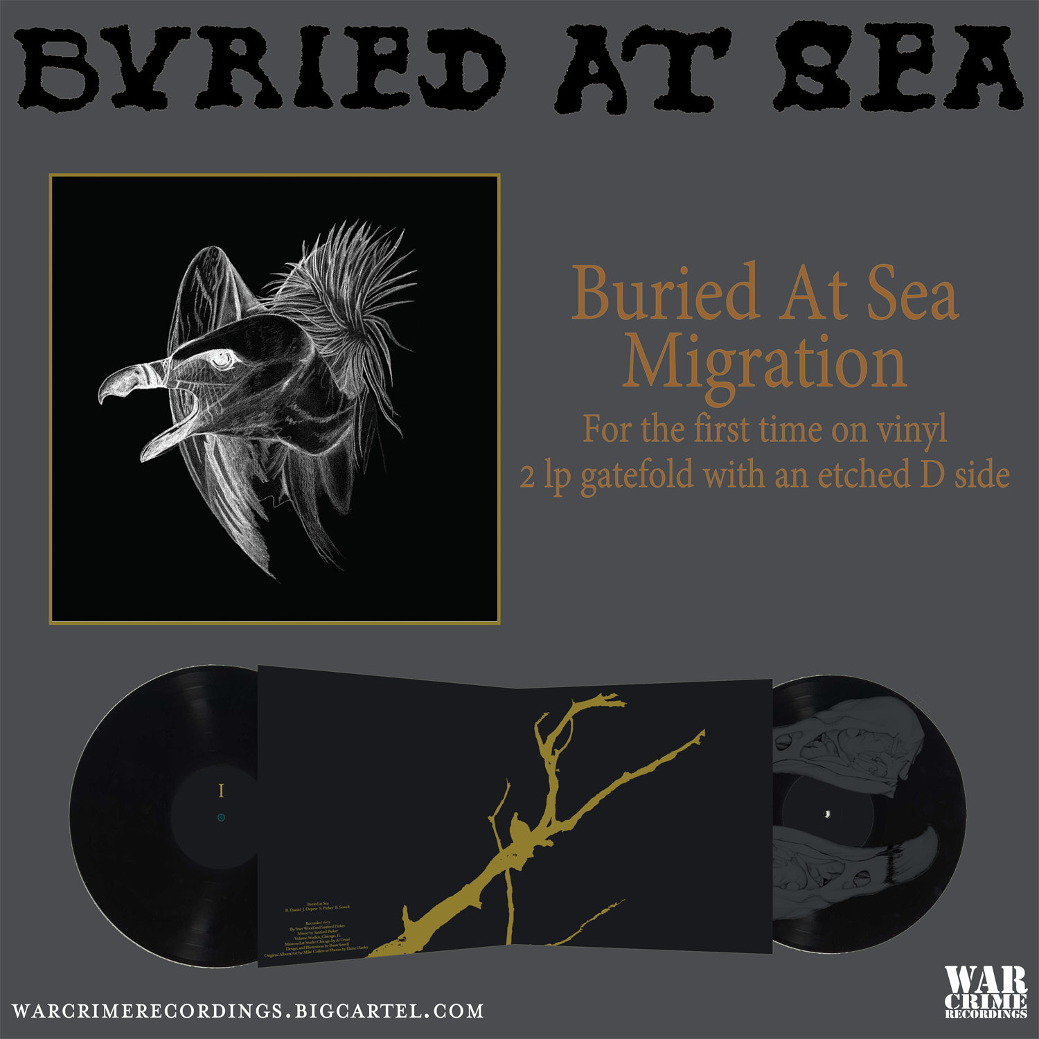 buried at sea migration preorder flyer