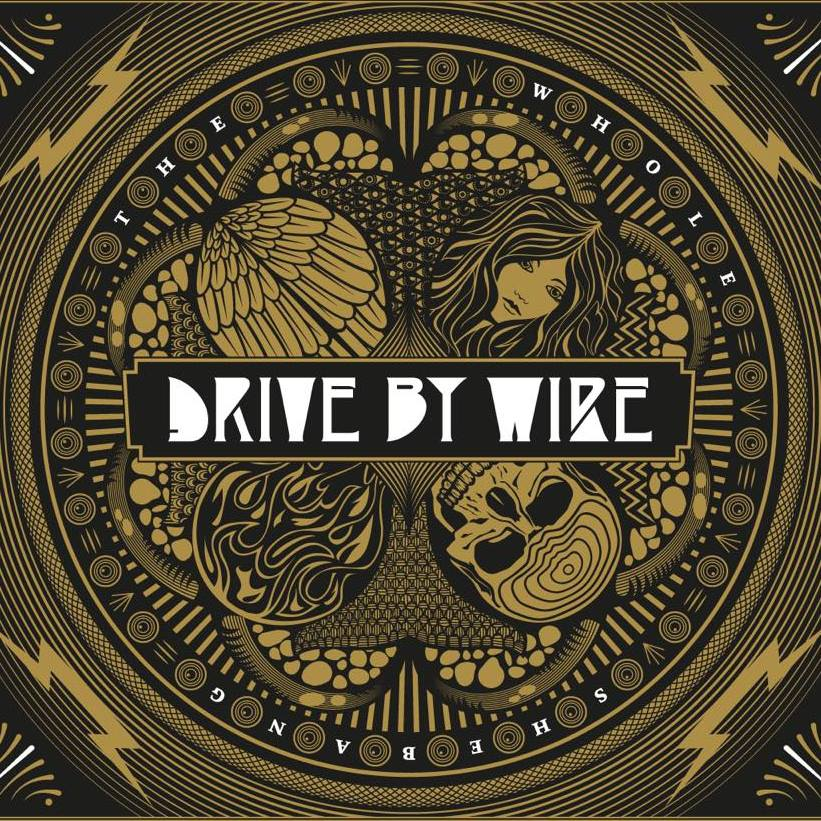 drive by wire the whole shebang
