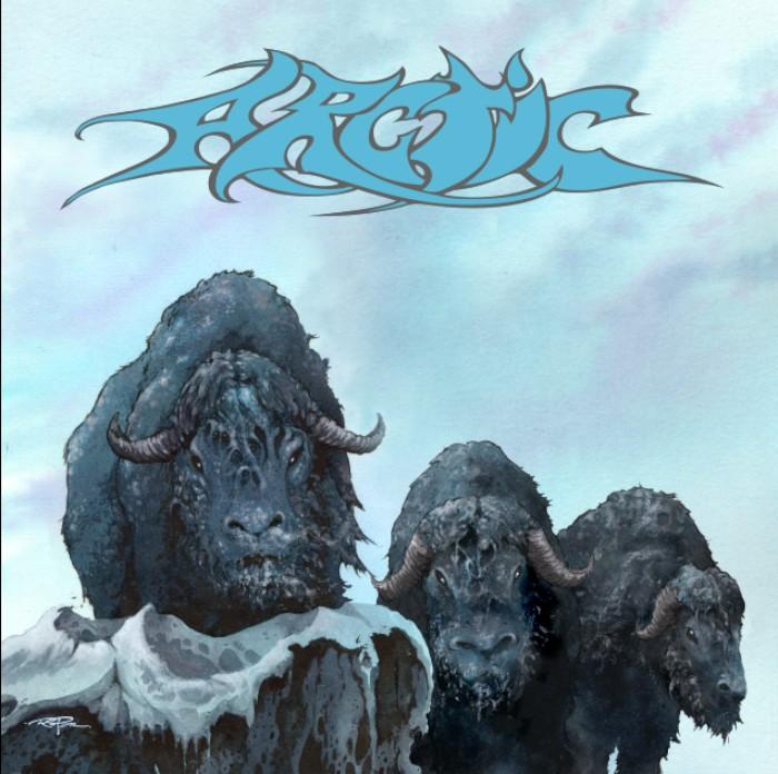 arctic-arctic-700