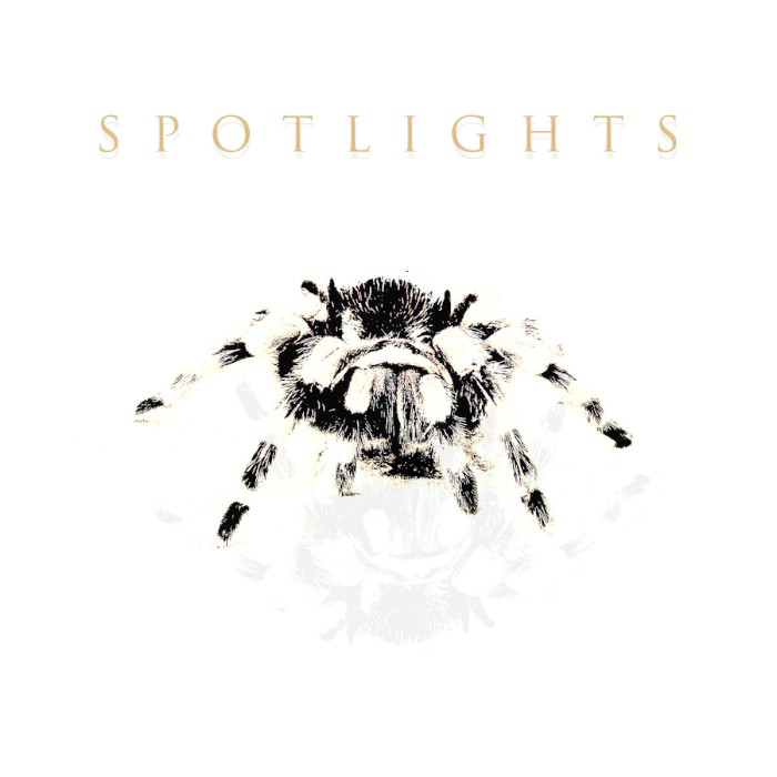 spotlights spiders