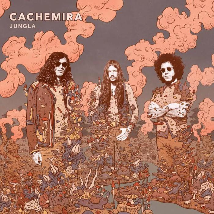cachemira-jungla