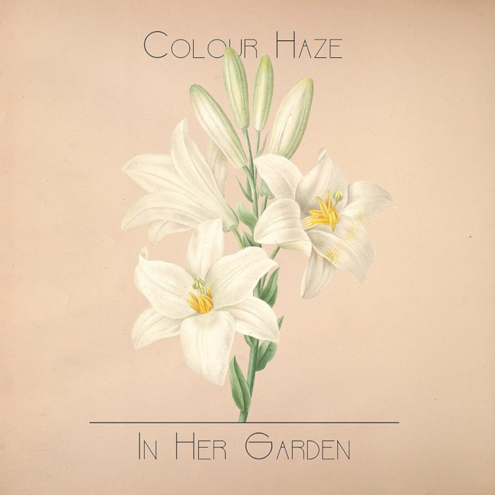 colour haze in her garden