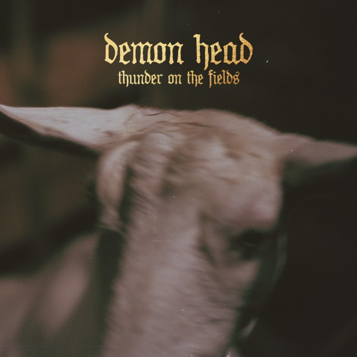 demon head thunder on the fields