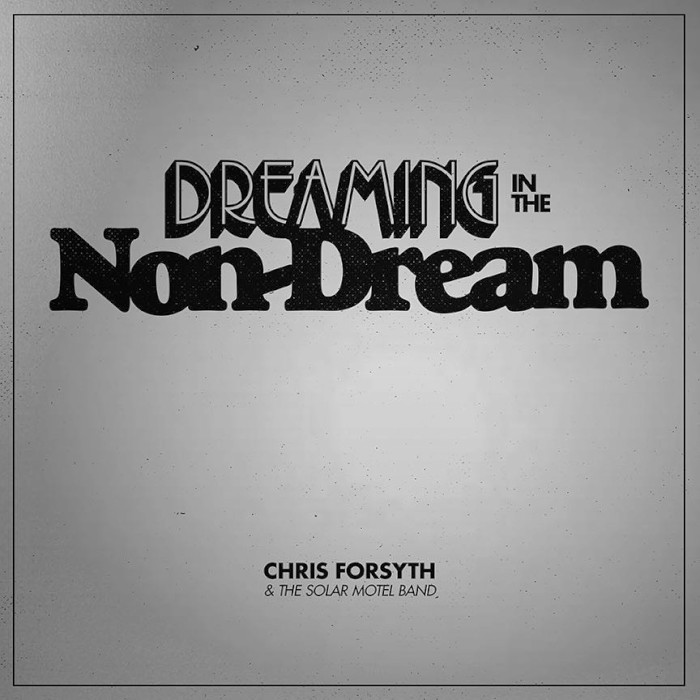 chris-forsyth-solar-motel-band-dreaming-in-the-non-dream