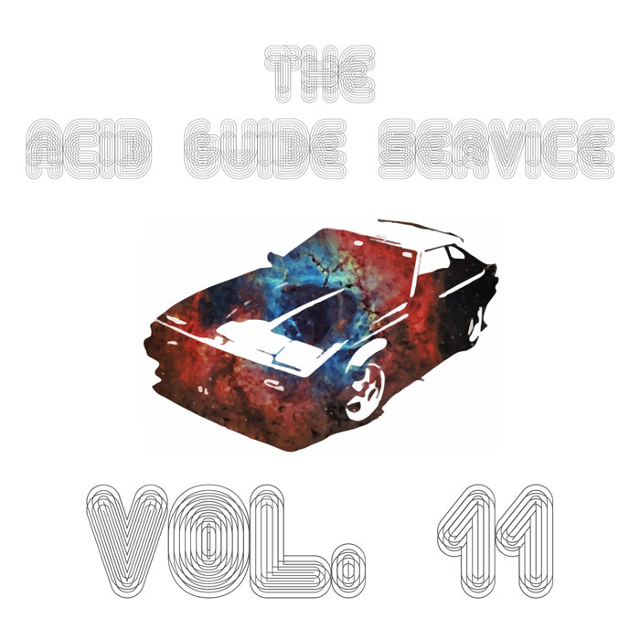the acid guide service vol 11