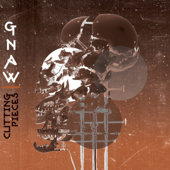 gnaw-cutting-pieces