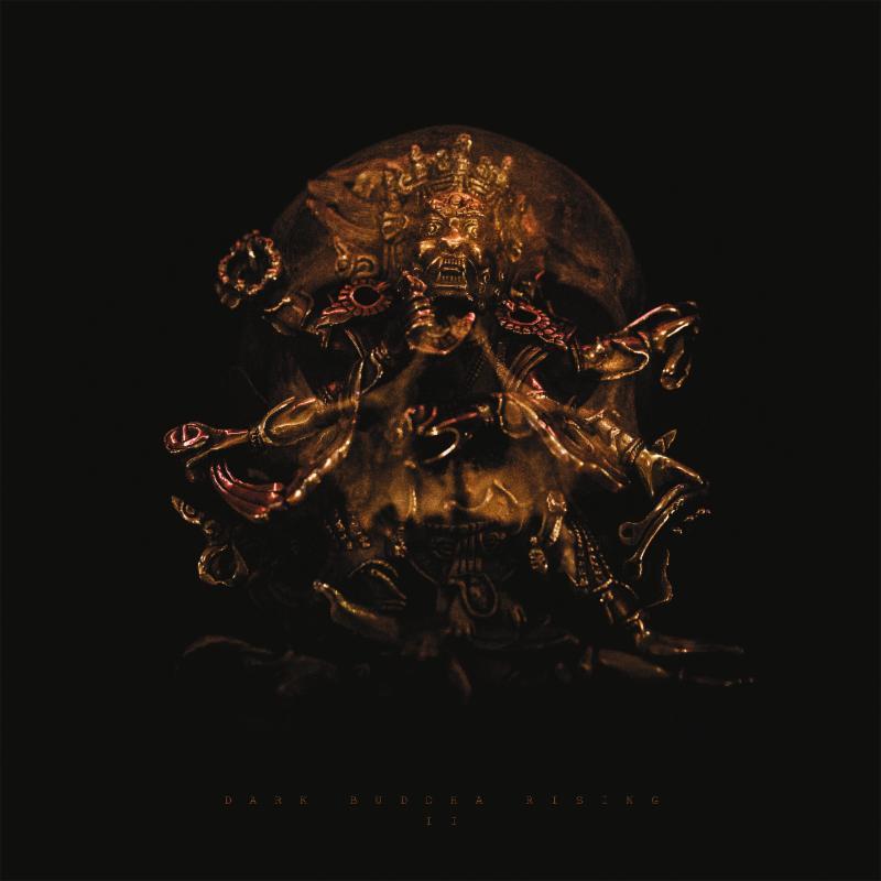 dark buddha rising ii