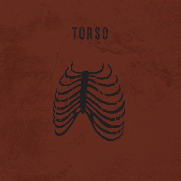 torso limbs