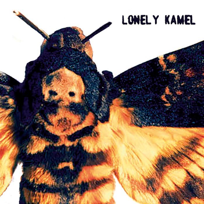 Lonely Kamel Deaths Head Hawkmoth