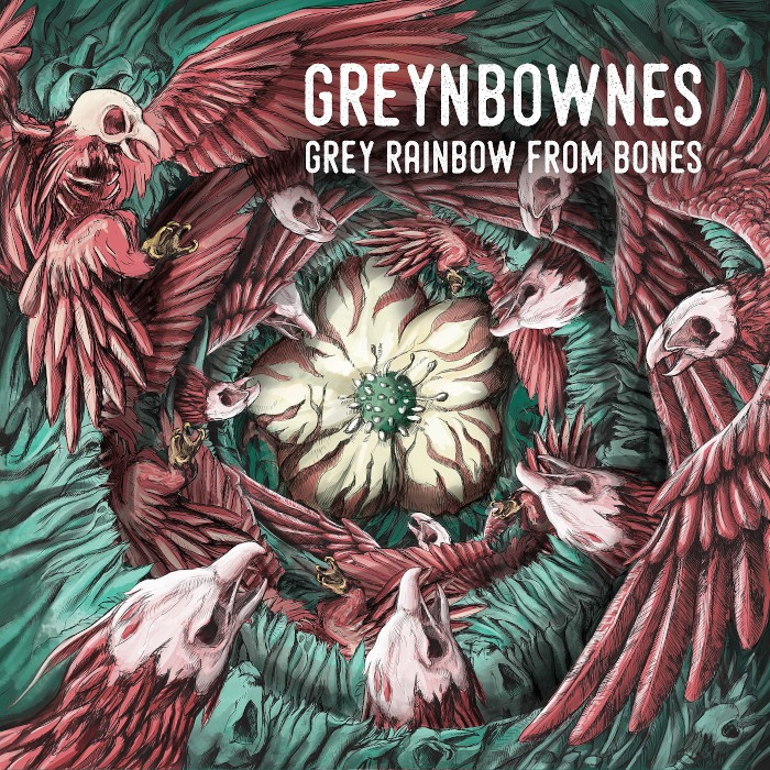 greynbownes grey rainbow from bones
