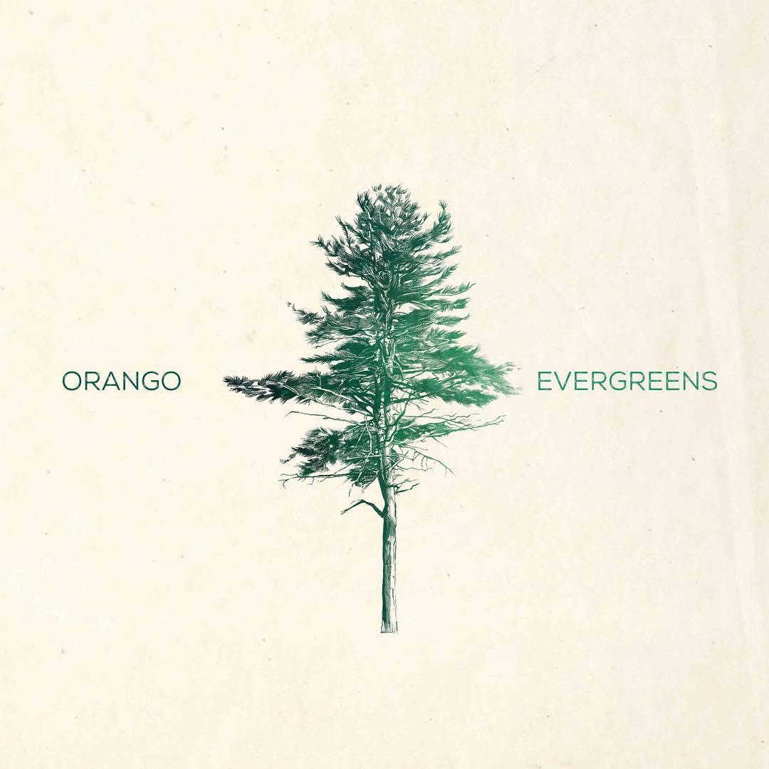 orango evergreens
