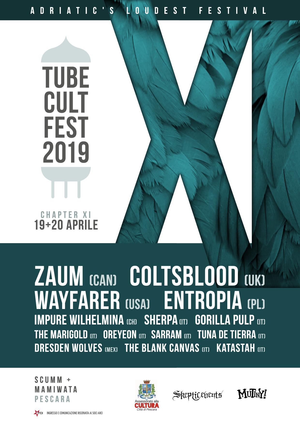 tube cult fest 2019 poster