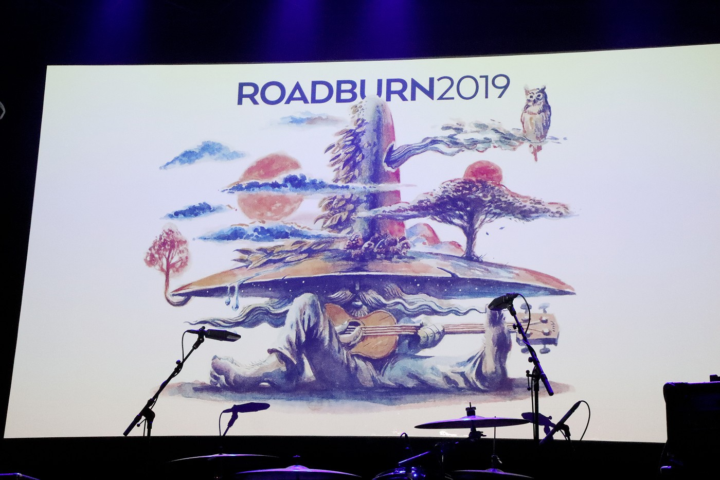 roadburn 2019 banner (Photo by JJ Koczan)