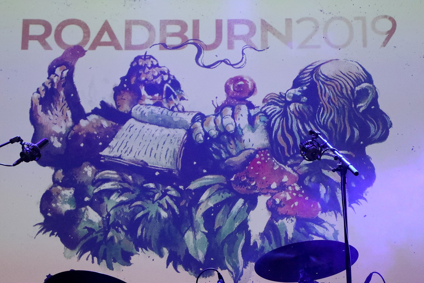 roadburn 2019 banner day four