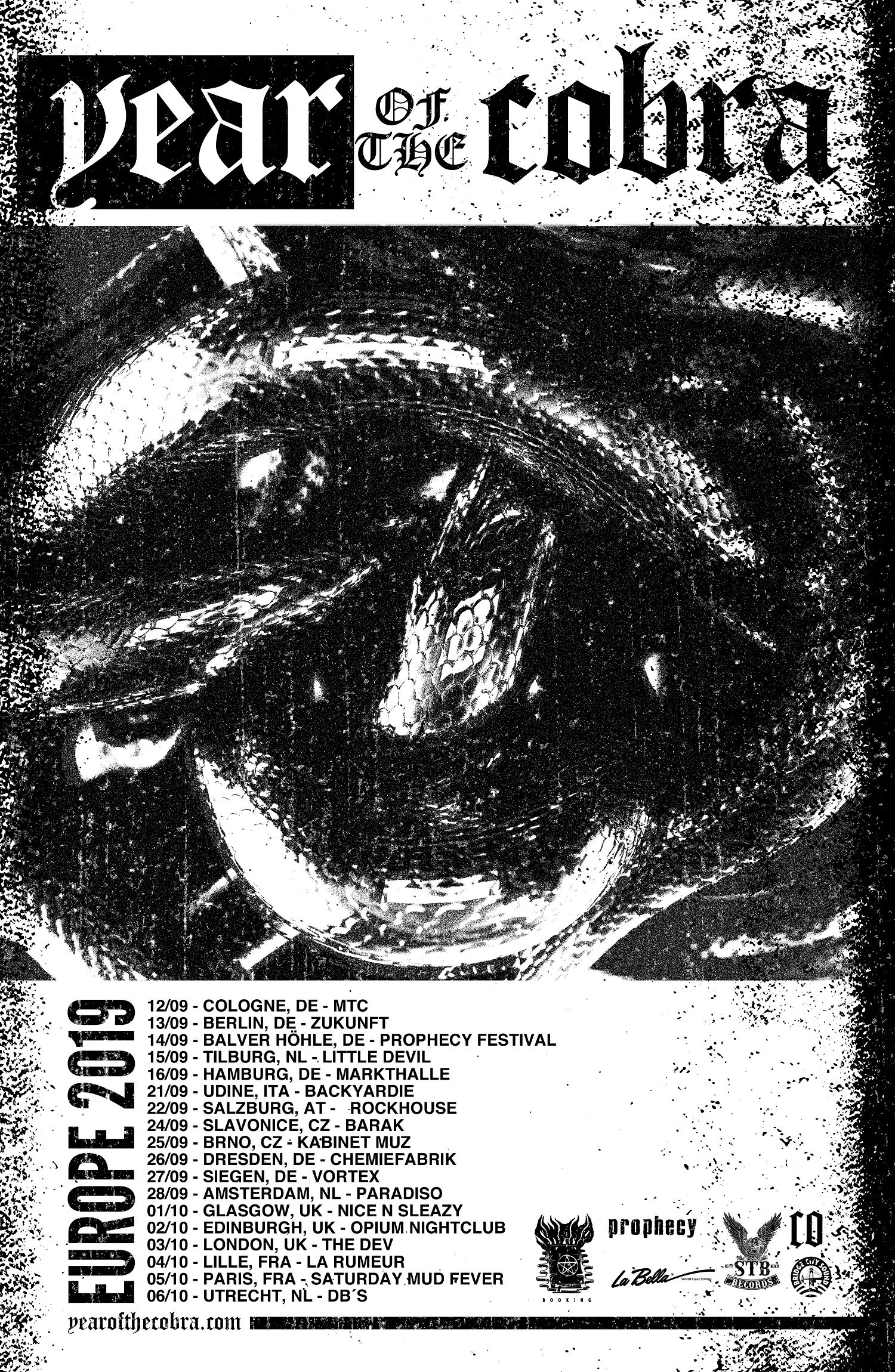 year of the cobra tour poster