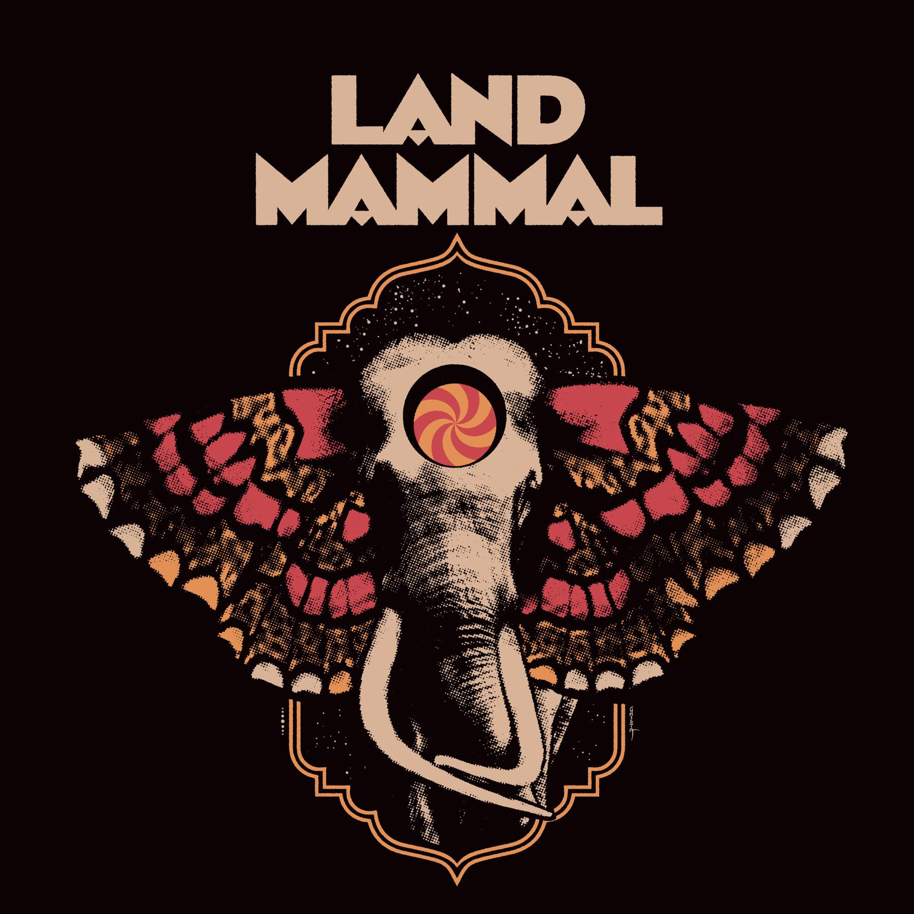 land mammal land mammal