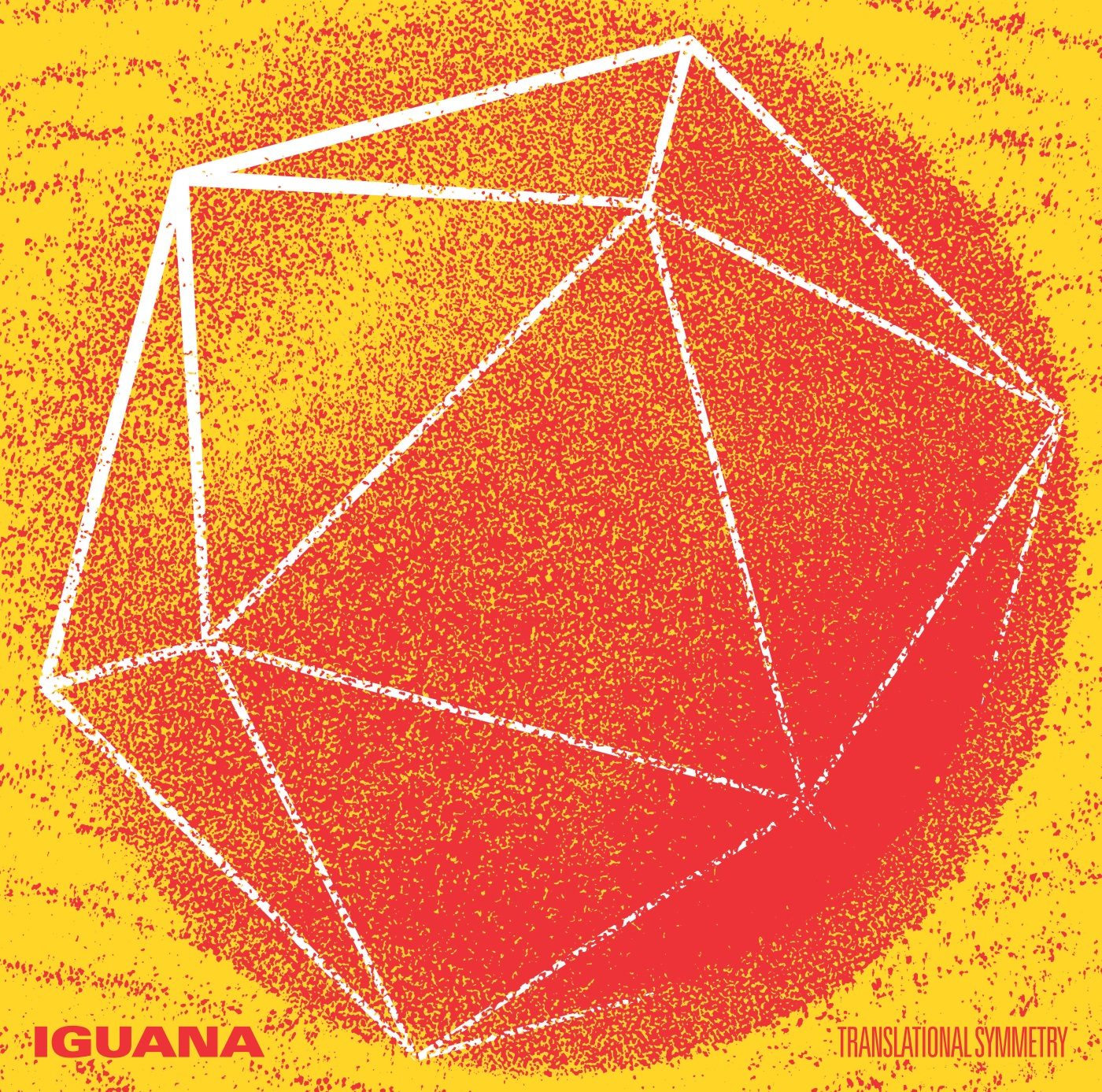 Iguana Translational Symmetry
