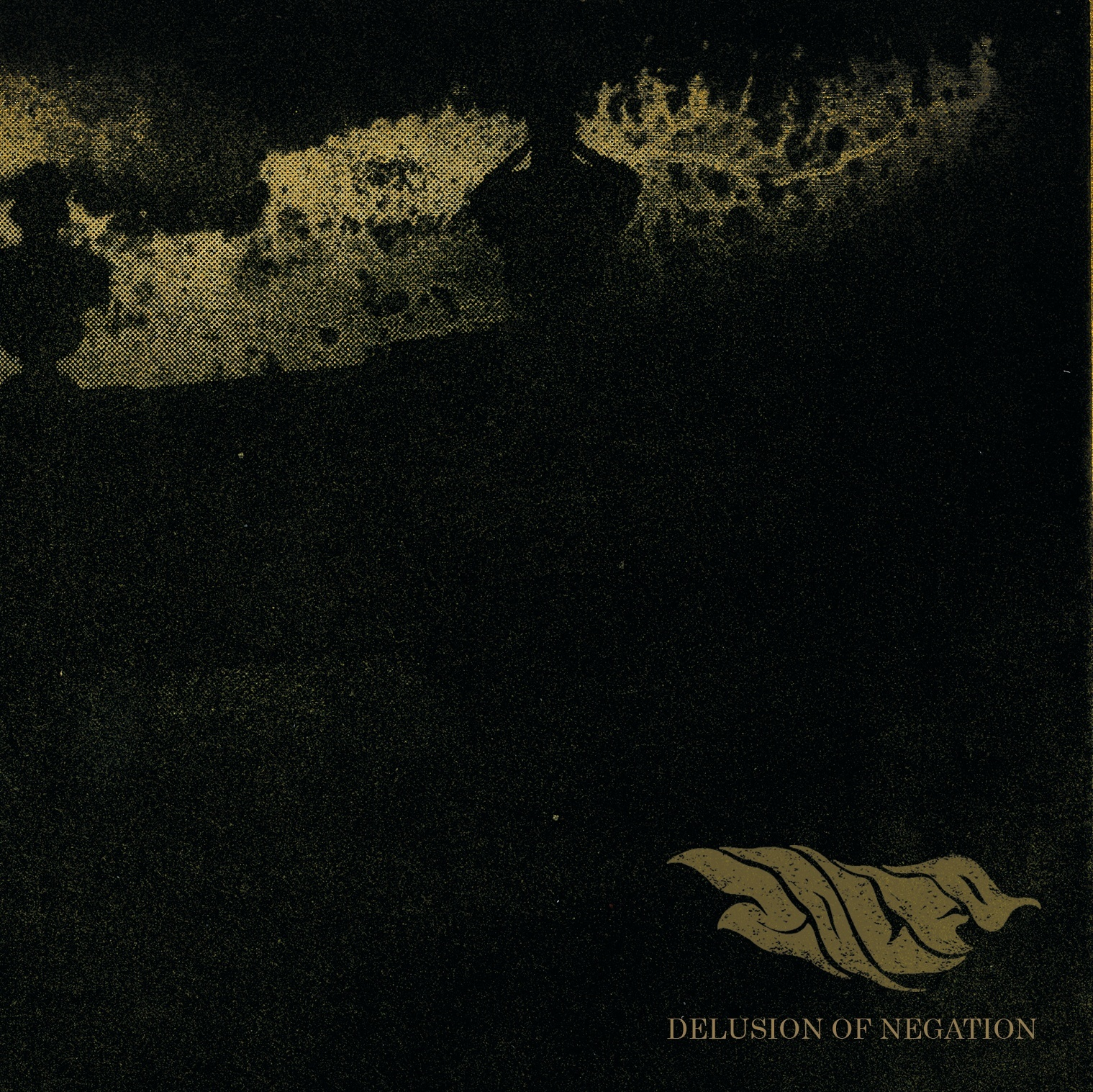 zolfo delusion of negation