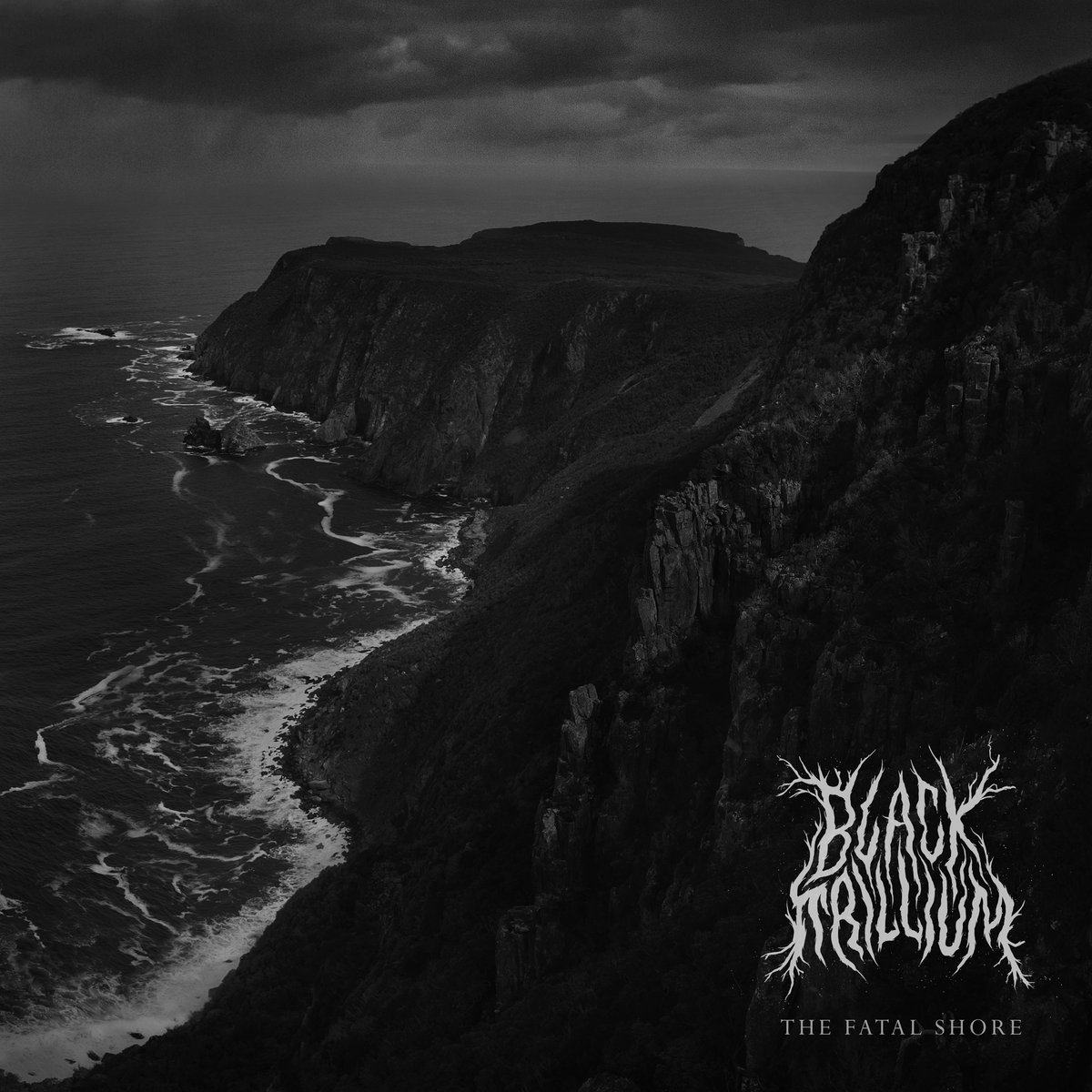 black trillium the fatal shore