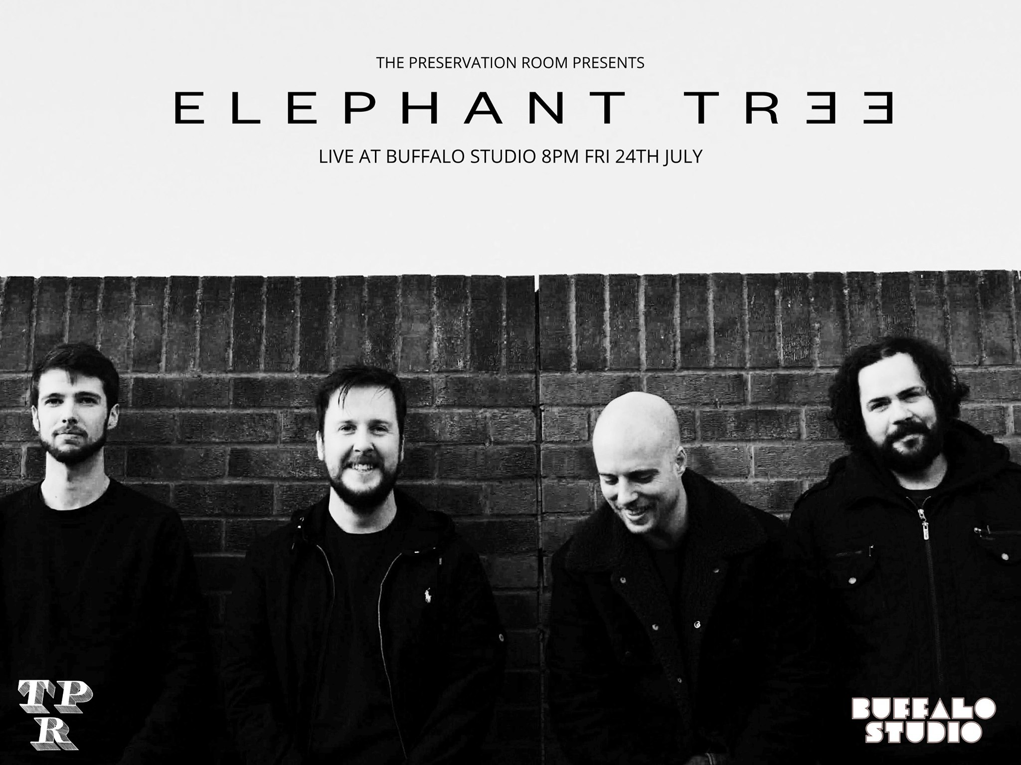 elephant tree buffalo studio