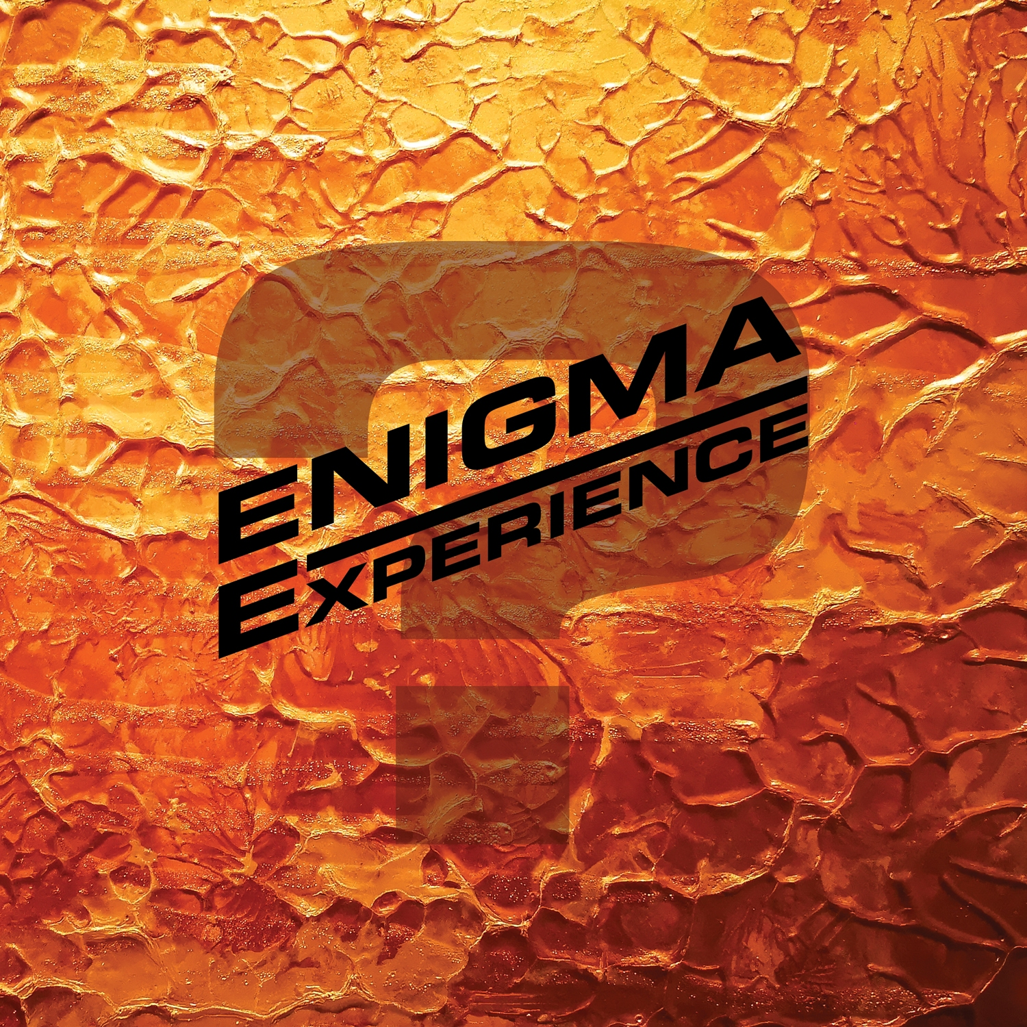cover Enigma Experience Question Mark