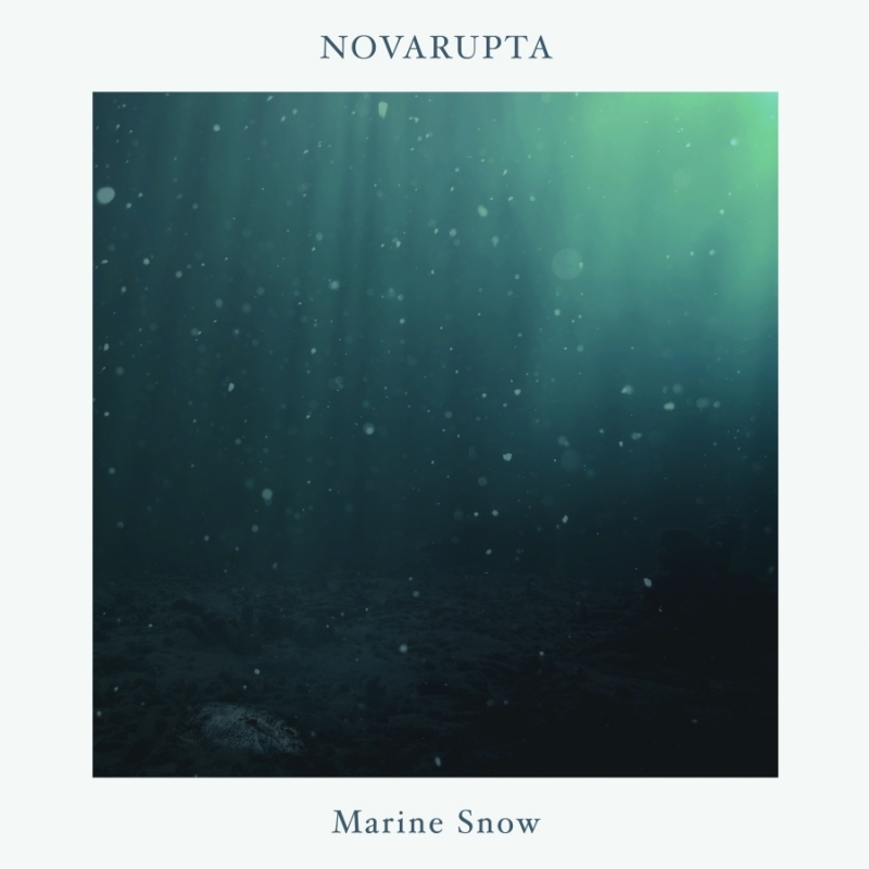 novarupta marine snow