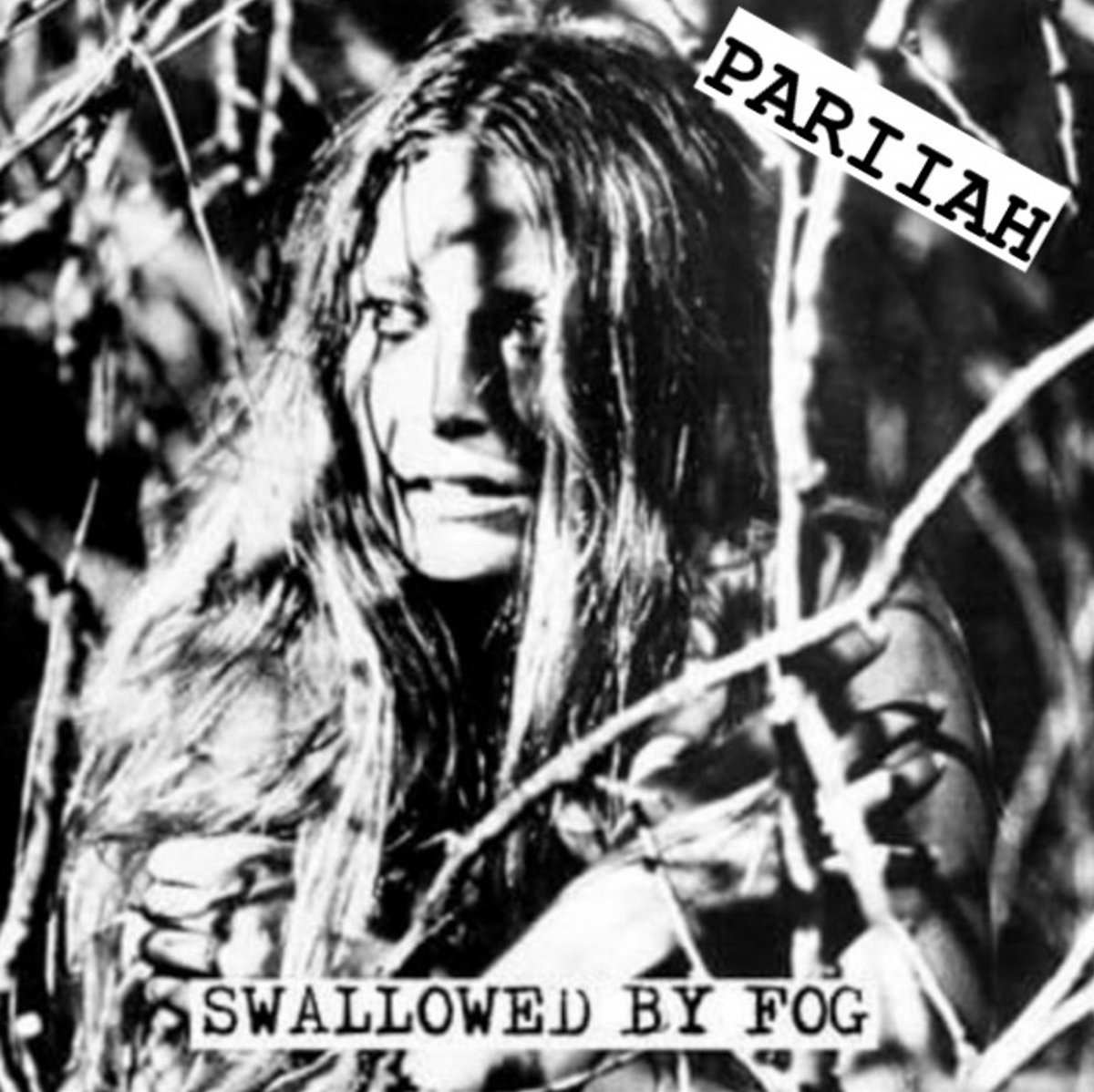 Pariiah swallowed by fog