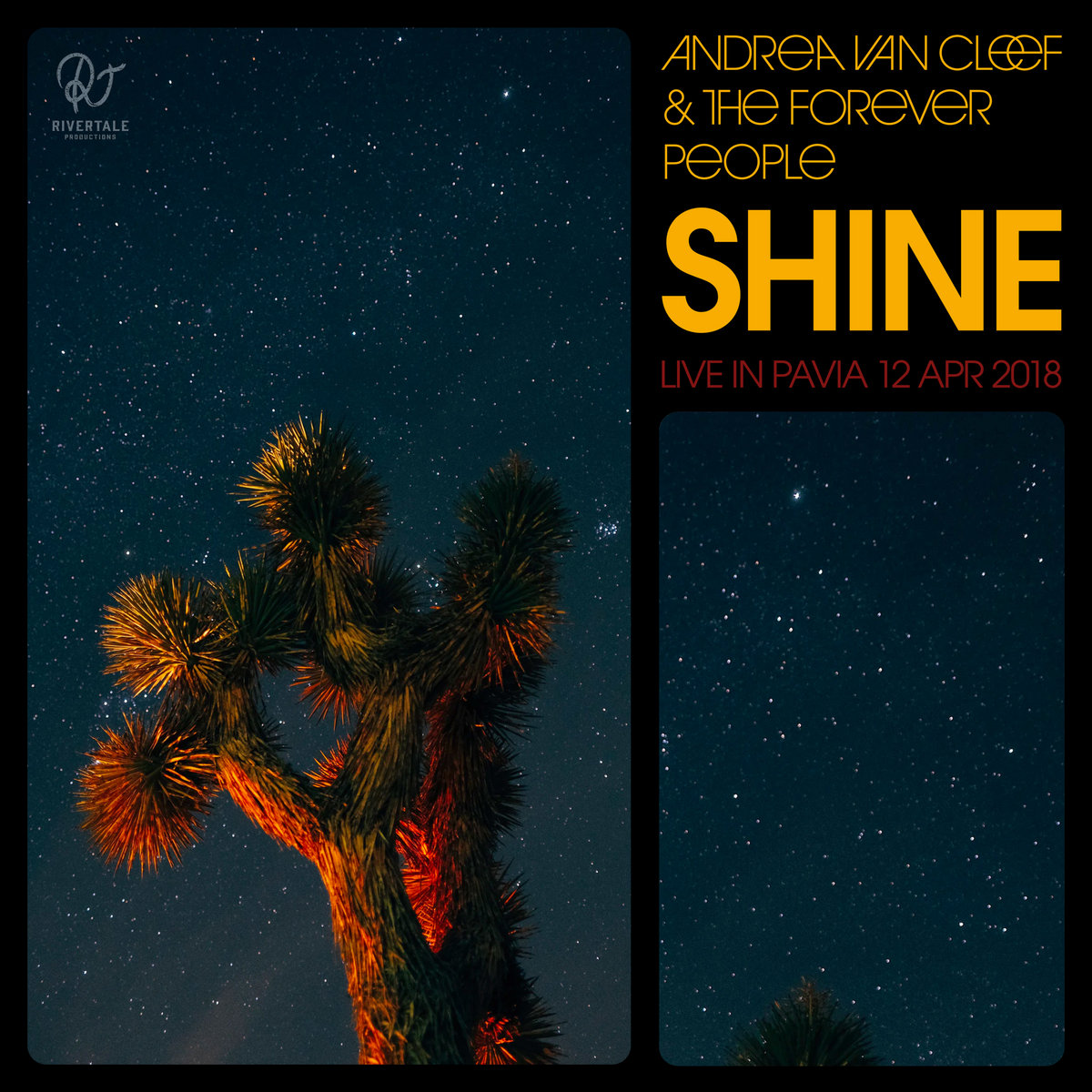 andrea van cleef and the forever people shine