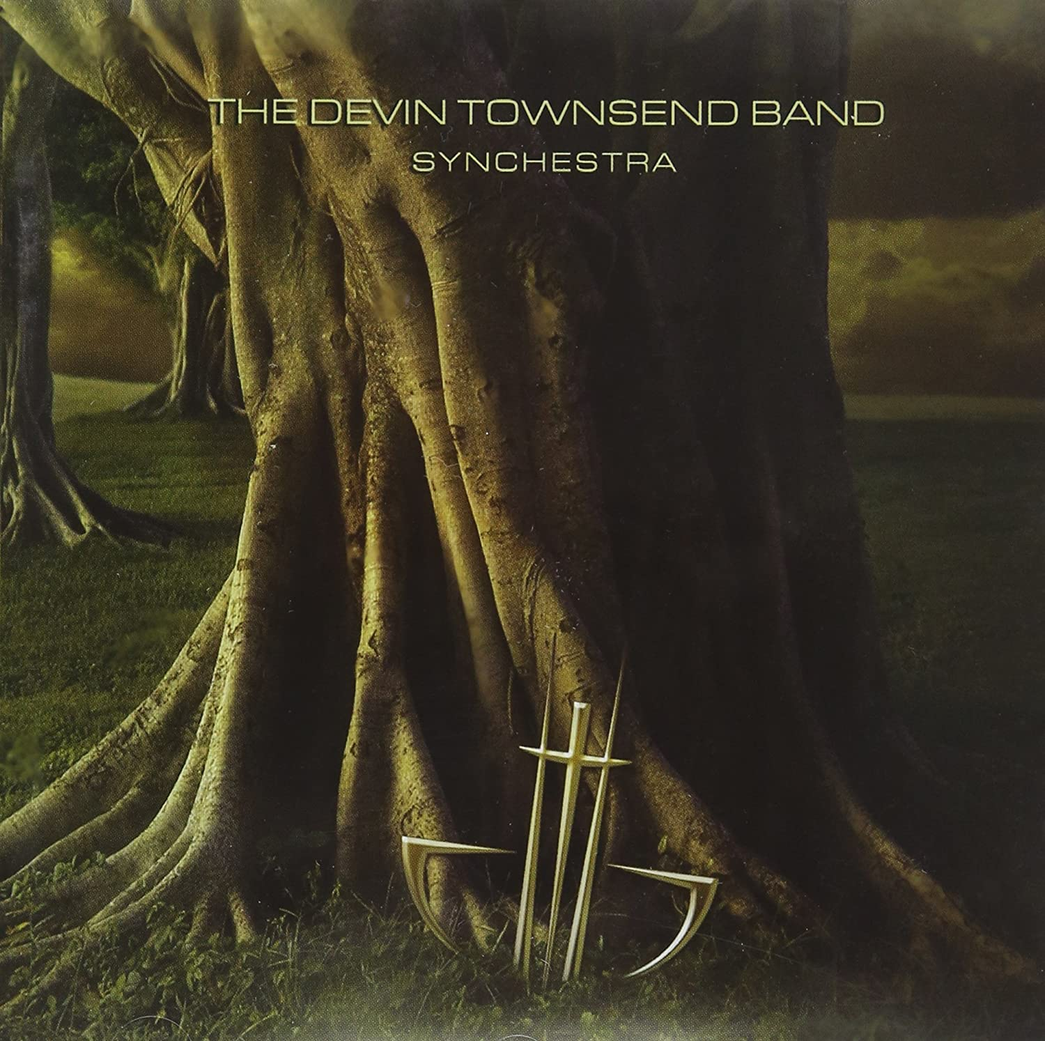 the devin townsend band synchestra