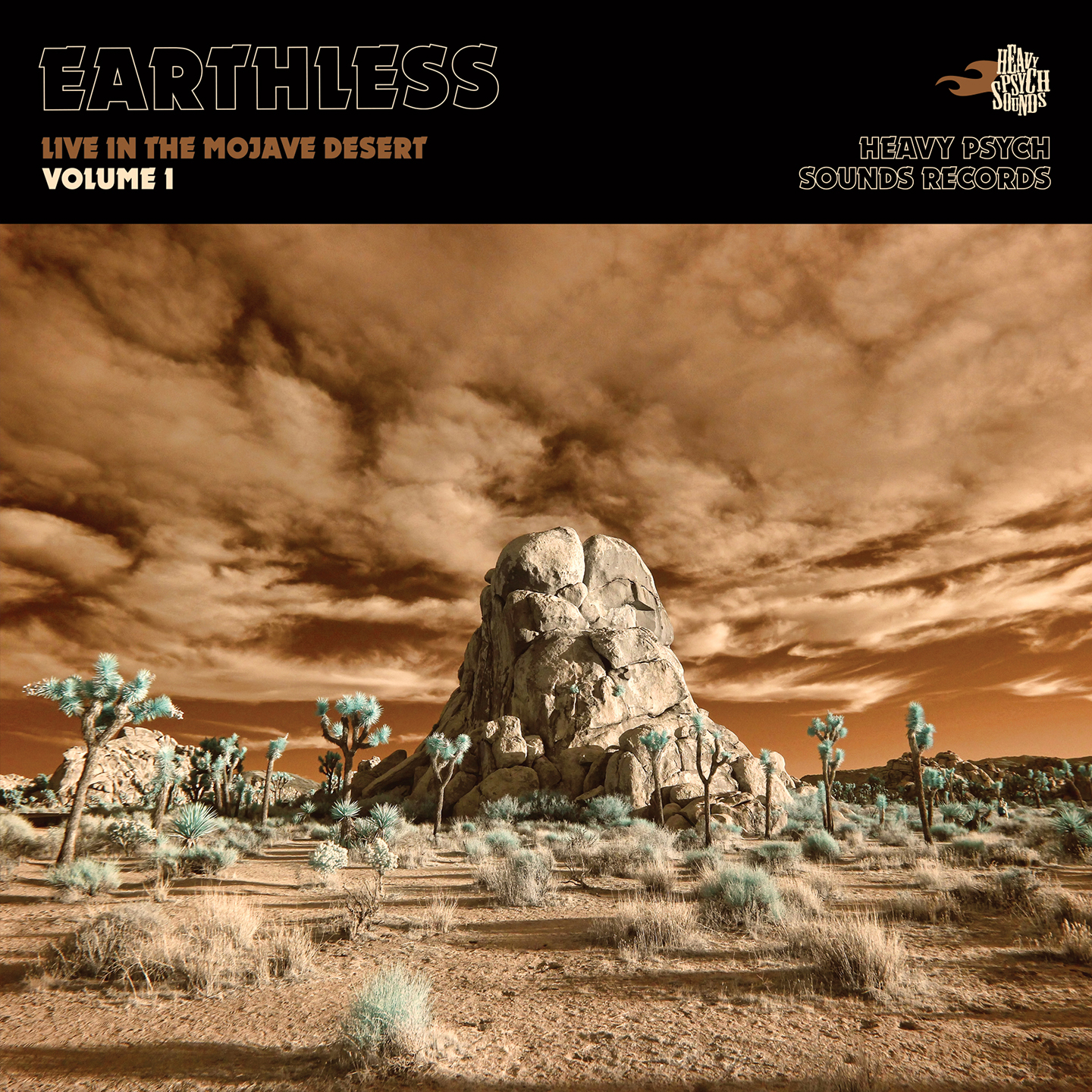 earthless live in the mojave desert