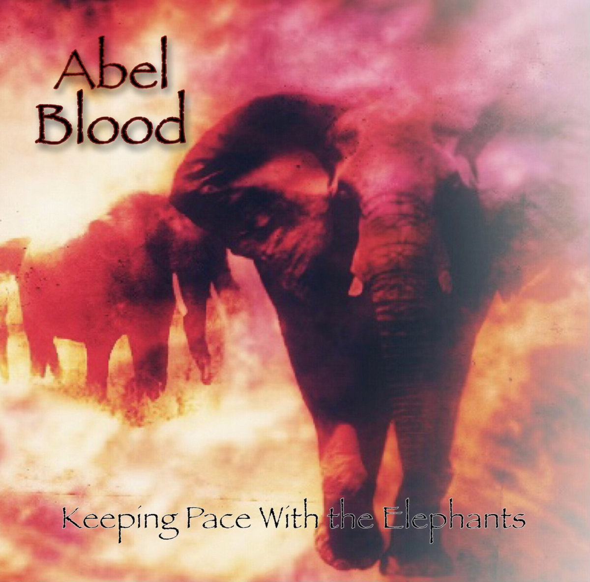 Abel Blood Keeping Pace with the Elephants