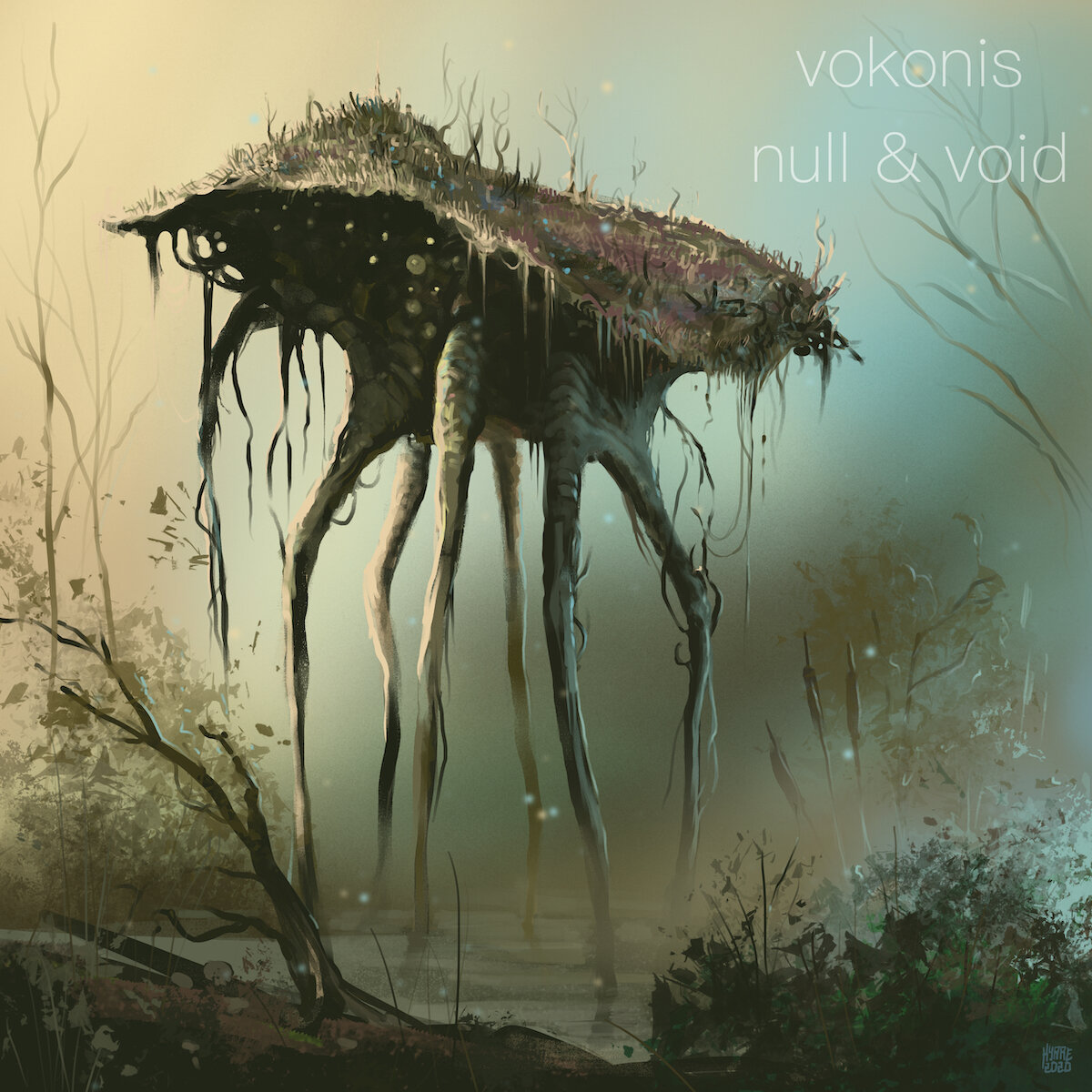 vokonis null and void